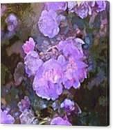 Rose 238 Canvas Print