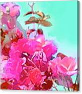 Rose 249 Canvas Print