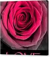 Rose 33 Love Canvas Print