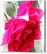Rose - 4505-004 Canvas Print