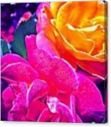 Rose 49 Canvas Print