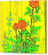 Rose 9 Canvas Print