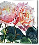 Pink And Yellow Rose Anne Canvas Print