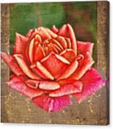 Rose Blank Greeting Card Canvas Print