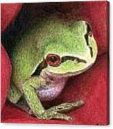 Rose Frog Canvas Print