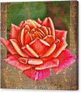 Rose Greeting Card Birthday Canvas Print