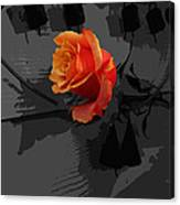 Rose IIi - A Message Canvas Print