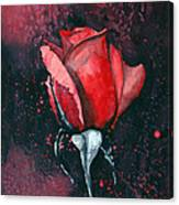 Rose In Flames Canvas Print