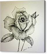 Rose In Monotone Canvas Print