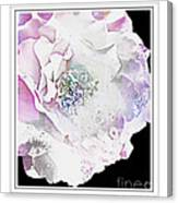 Rose In Pastels Canvas Print