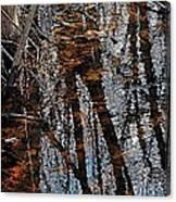 Rose Lake Canvas Print