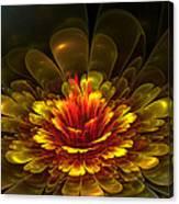 Rose Of Demina Canvas Print