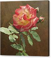 Rose On Thornridge Road Canvas Print