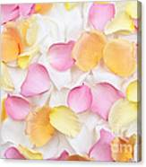 Rose Petals Background Canvas Print