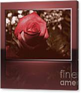 Rose Reflection 1 Canvas Print