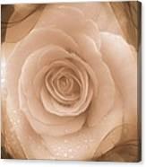 Rose Romance Canvas Print