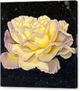 Rose Stars Canvas Print