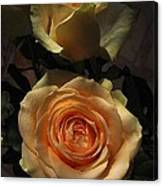 Roses Forever_2 Canvas Print