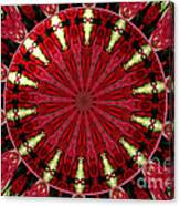 Roses Kaleidoscope Under Glass 11 Canvas Print