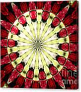Roses Kaleidoscope Under Glass 23 Canvas Print