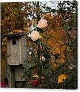 Roses Of Fall Canvas Print