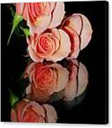 Roses On Glass Canvas Print