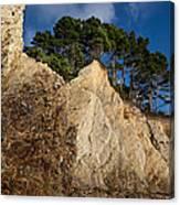 Ross Creek Cliffs Canvas Print