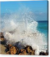 Ross Witham Beach 2 Canvas Print