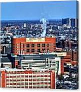 Roswell Park Winter 2013 Canvas Print