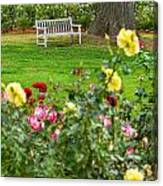 Rosy View - Beautiful Rose Garden Of The Huntington Library. Canvas Print
