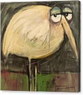 Rotund Bird Canvas Print