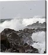 Rough Sea At Ocean Shores Canvas Print