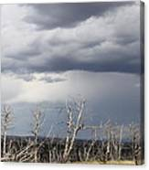 Rough Skys Over Colorado Plateau Canvas Print