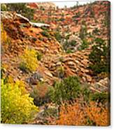 Rough Terrain In Autumn Along Zion-mount Carmel Highway In Zion Np-ut Canvas Print