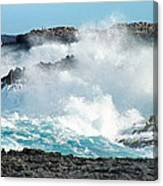 Rough Waves Offshore Whale Point Canvas Print