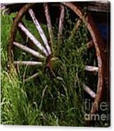 Round And Rusty Canvas Print