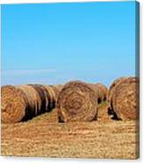 Round Bales Of Hay Canvas Print