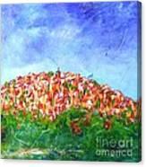 Roussillon Village Canvas Print