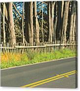 Route 1, Mendocino, California Canvas Print