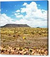 Route 66 Arizona Canvas Print