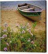 Rowboat And Asters Canvas Print