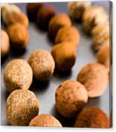 Rows Of Chocolate Truffles On Silver Canvas Print