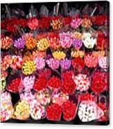 Rows Of Roses Canvas Print