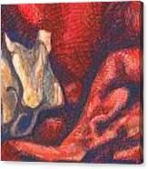 Royal Bone Bed Canvas Print