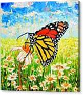 Royal Monarch Butterfly In Daisies Canvas Print