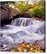 Royal River White Waterfall Canvas Print