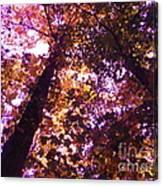 Royal Trees Series 1 Canvas Print
