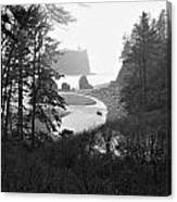 Ruby Beach In The Winter In Black And White Canvas Print