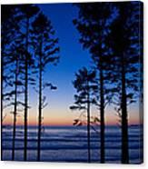 Ruby Beach Sillouette II Canvas Print