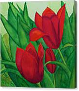 Ruby Red Tulips Canvas Print